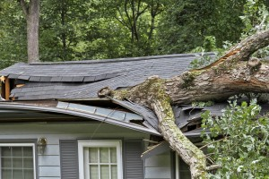 Jenkins Storm Damage Restoration