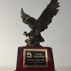 Soaring Eagle Award