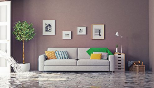 Preventing-Water-Damage[1]